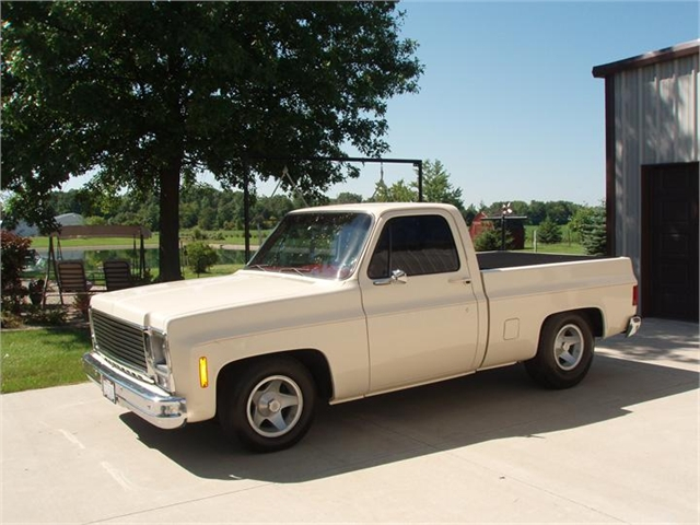 1976 chevy truck for sale autos post. Black Bedroom Furniture Sets. Home Design Ideas